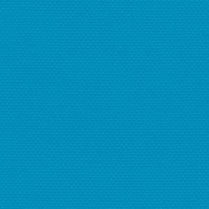 Neon Blue Cordura
